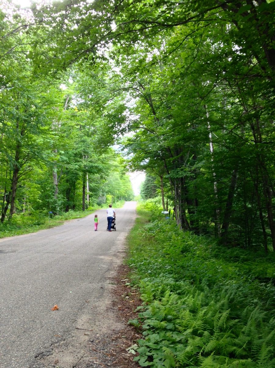 Beautiful Moments: A Summer Stroll through Cottage Country